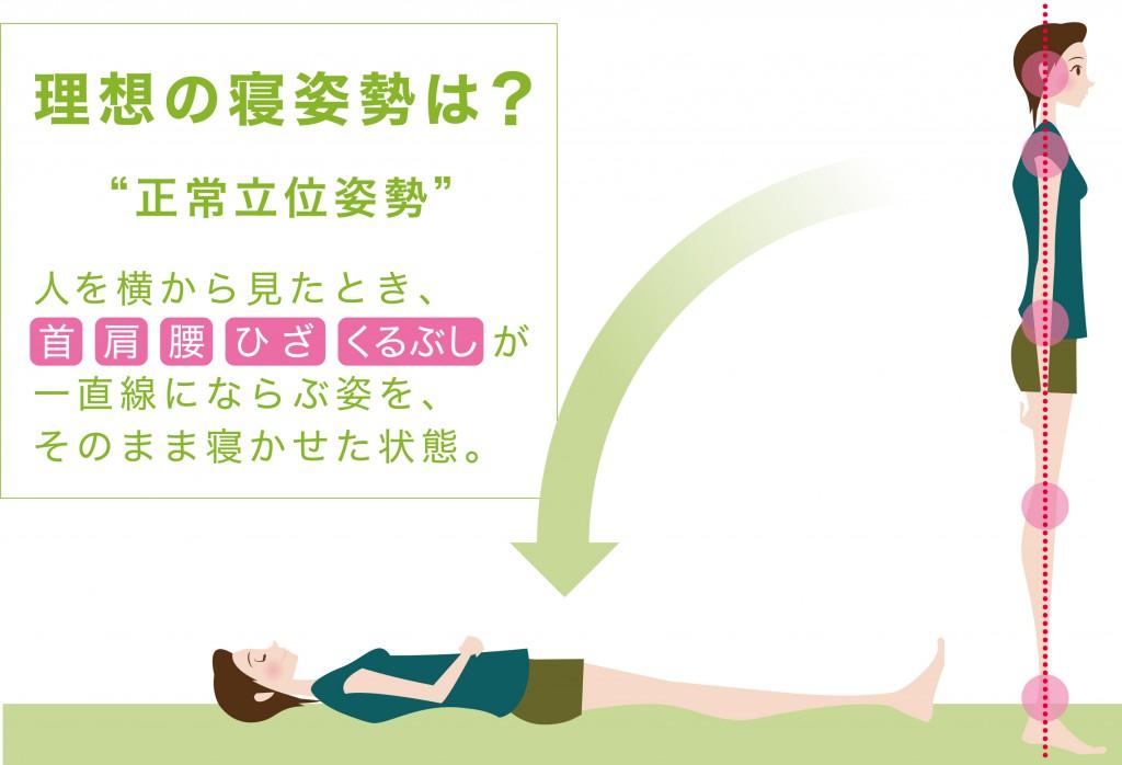 理想の寝姿勢2