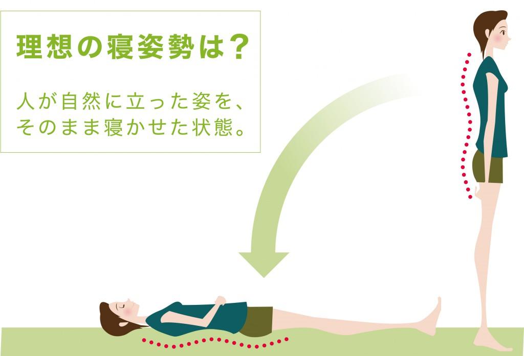 理想の寝姿勢1