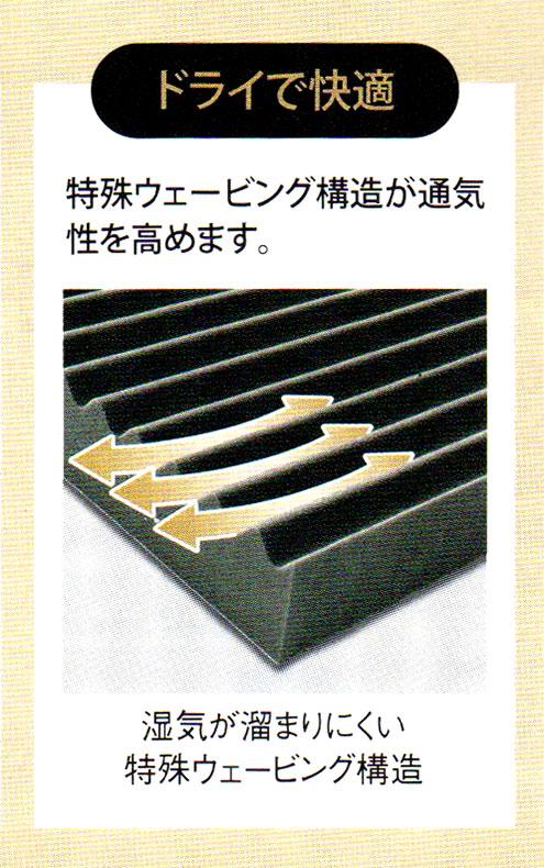image347